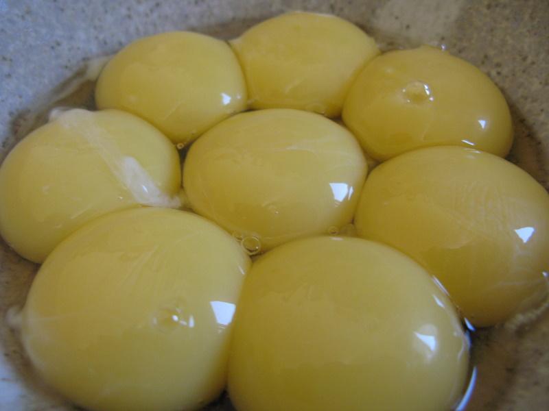 מפרידים את הבייצים