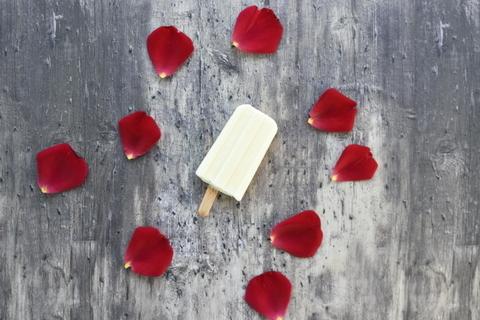 גלידת גבינת עיזים וגרניום ללא מכונת גלידה