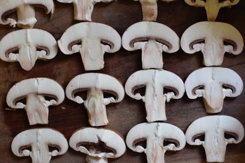 הכנת הפטריות